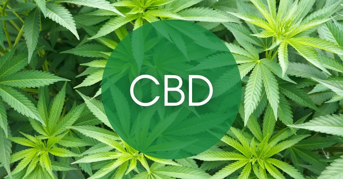 What the Research Tells us About CBD